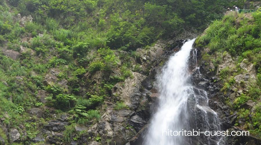 白神山地の画像 p1_17