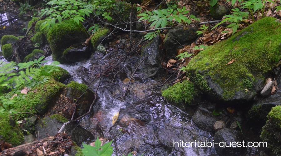 白神山地の画像 p1_22