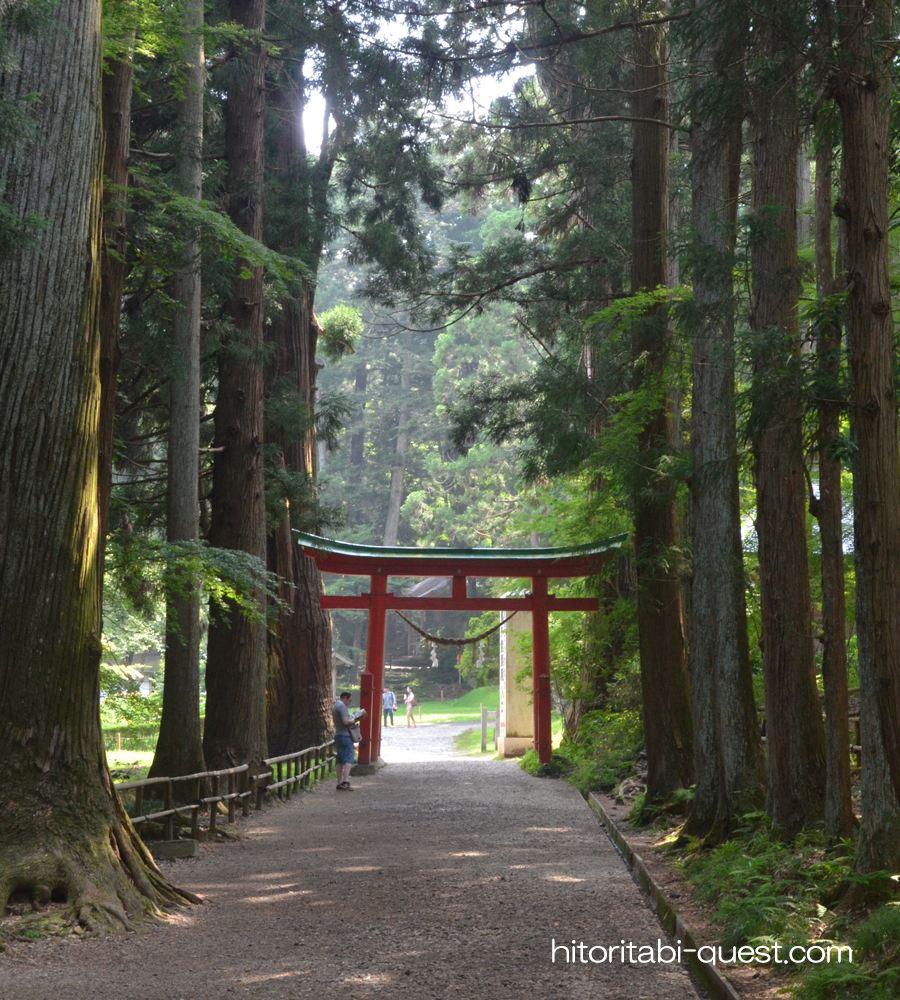 平泉の画像 p1_29